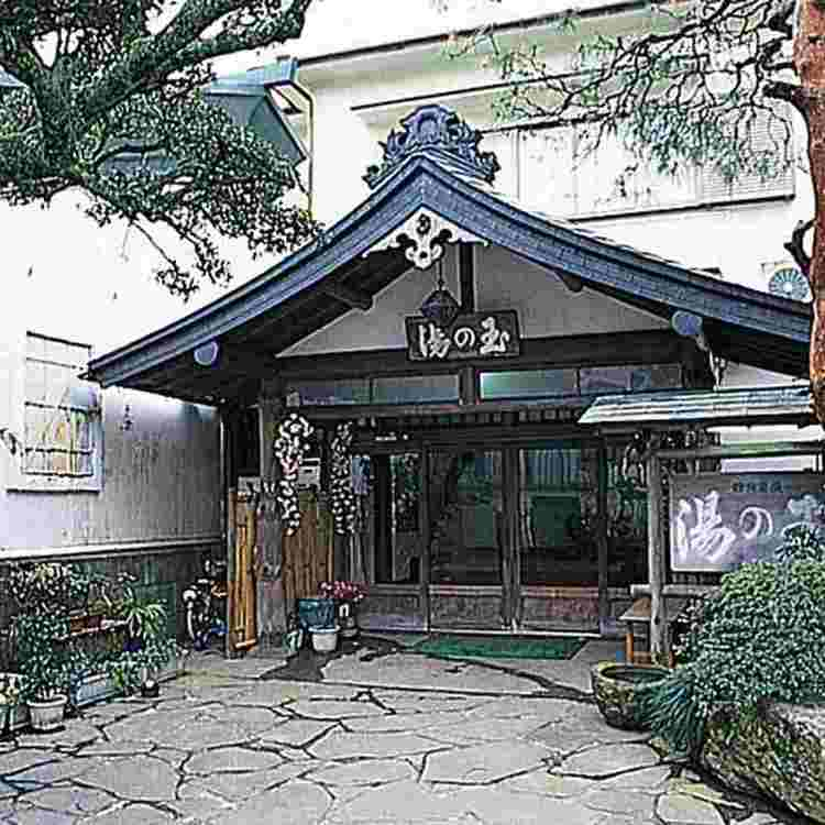 Hakone-onsen Ryokan Tama-noyu