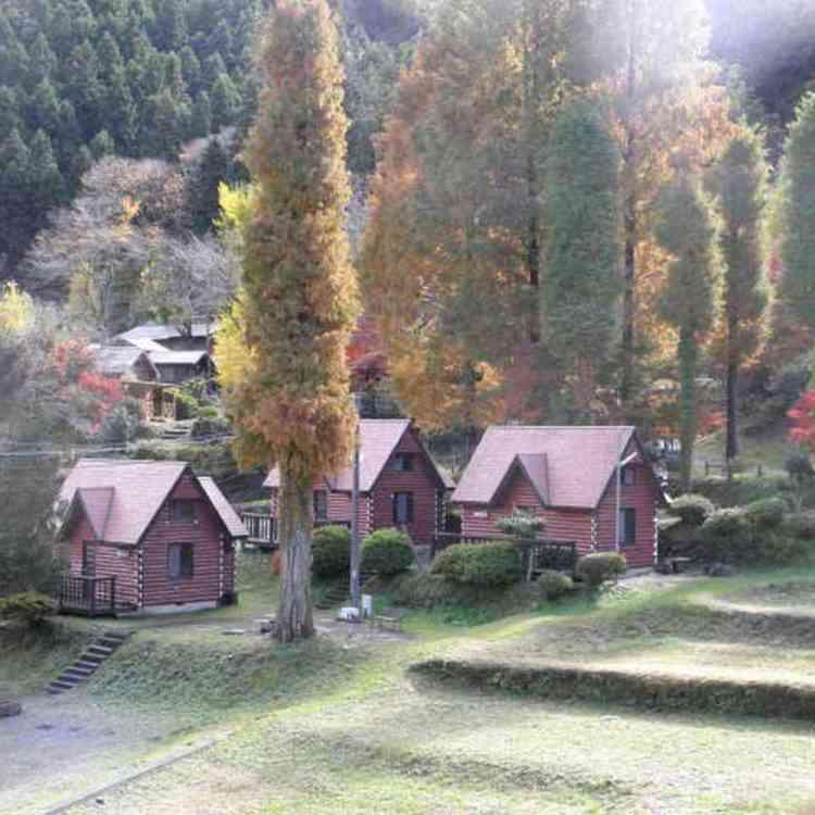 青根緑の休暇村センター