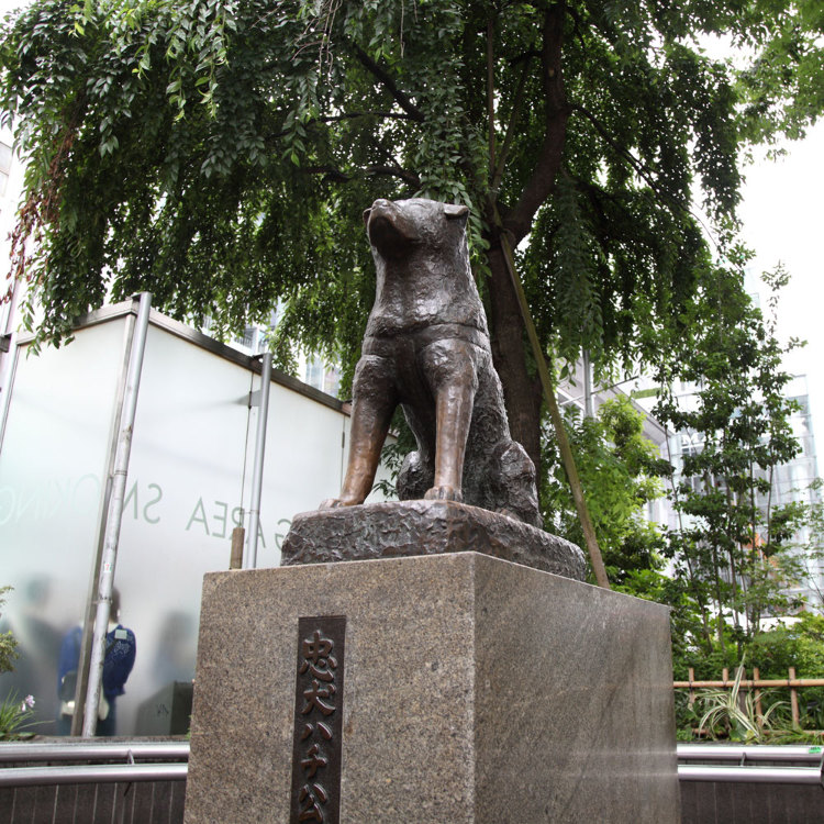The Statue of Hachiko