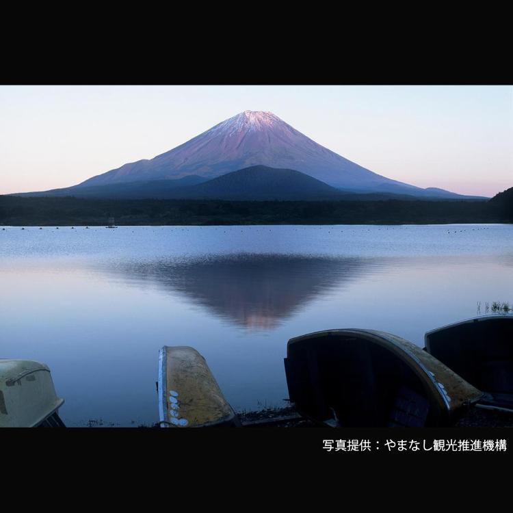 Shojiko
