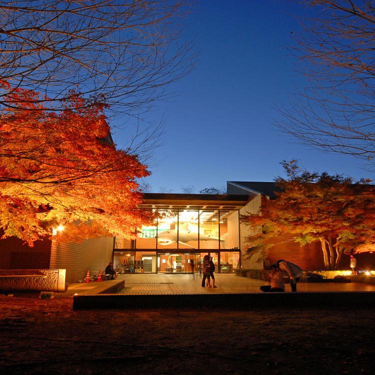 埼玉縣自然博物館
