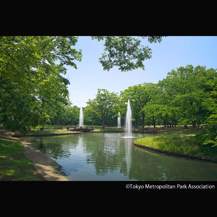 代代木公园